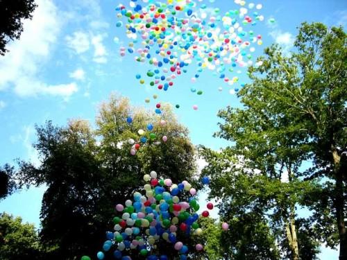 Palloncini elio rete
